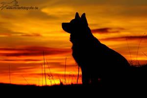 .sundown. by Maaira