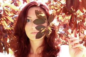 Summer red by rimolyne