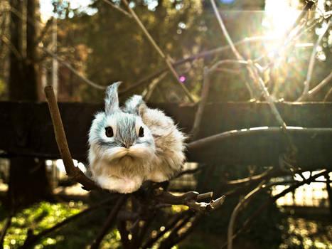 Easter bunny- update