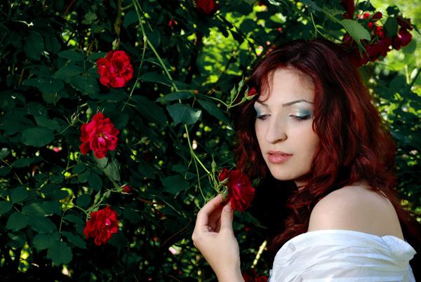 Garden of roses by rimolyne