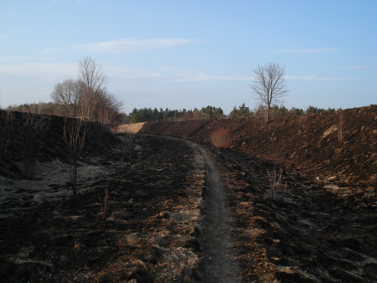 03.16 1 by Wolinpiotr