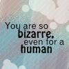 Icon - You're Bizarre by XxSafetyPinsxX