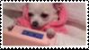 f2u nintendo ds dog stamp