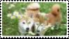 f2u flower shiba dogs stamp by NashobaPaws
