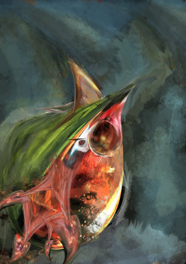 Watermelon squid by robinweatherall