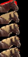 Horse Mane Tutorial