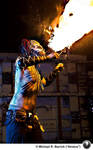 Fire Eater 318
