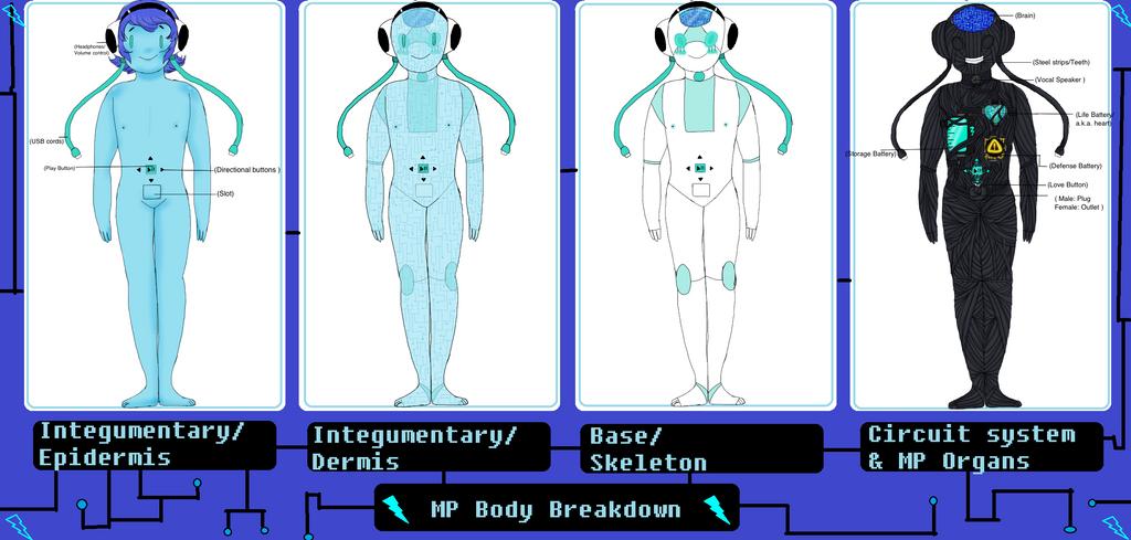 MP Body Breakdown (revamp) by Ask-MusicPrincess3rd
