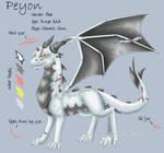 Peyon - Character Sheet by Wyndbain
