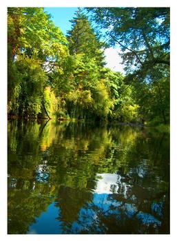 A Creek in Silverton