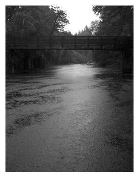 Bridge During Rain