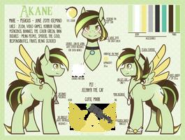 Ref Sheet - Akane (v.3) by Ak4neh