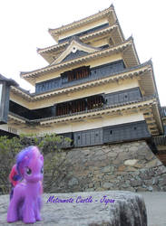 Ponies Around the World - Matsumoto, Japan by BTech