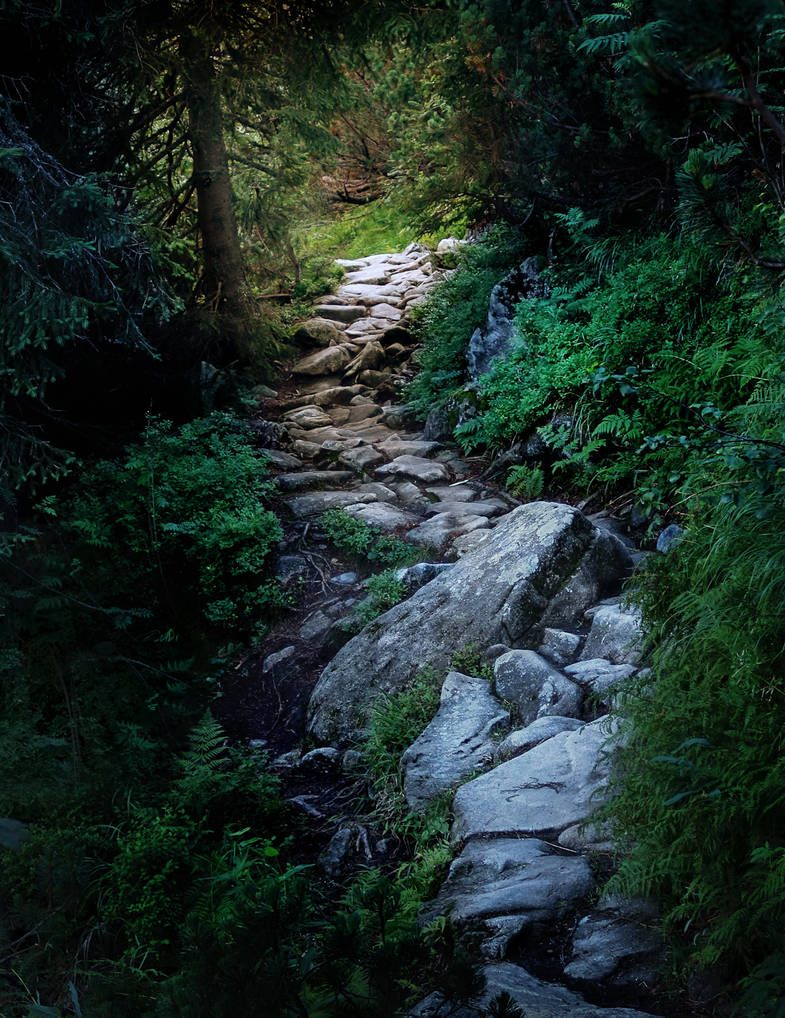 Path to light by WTek79