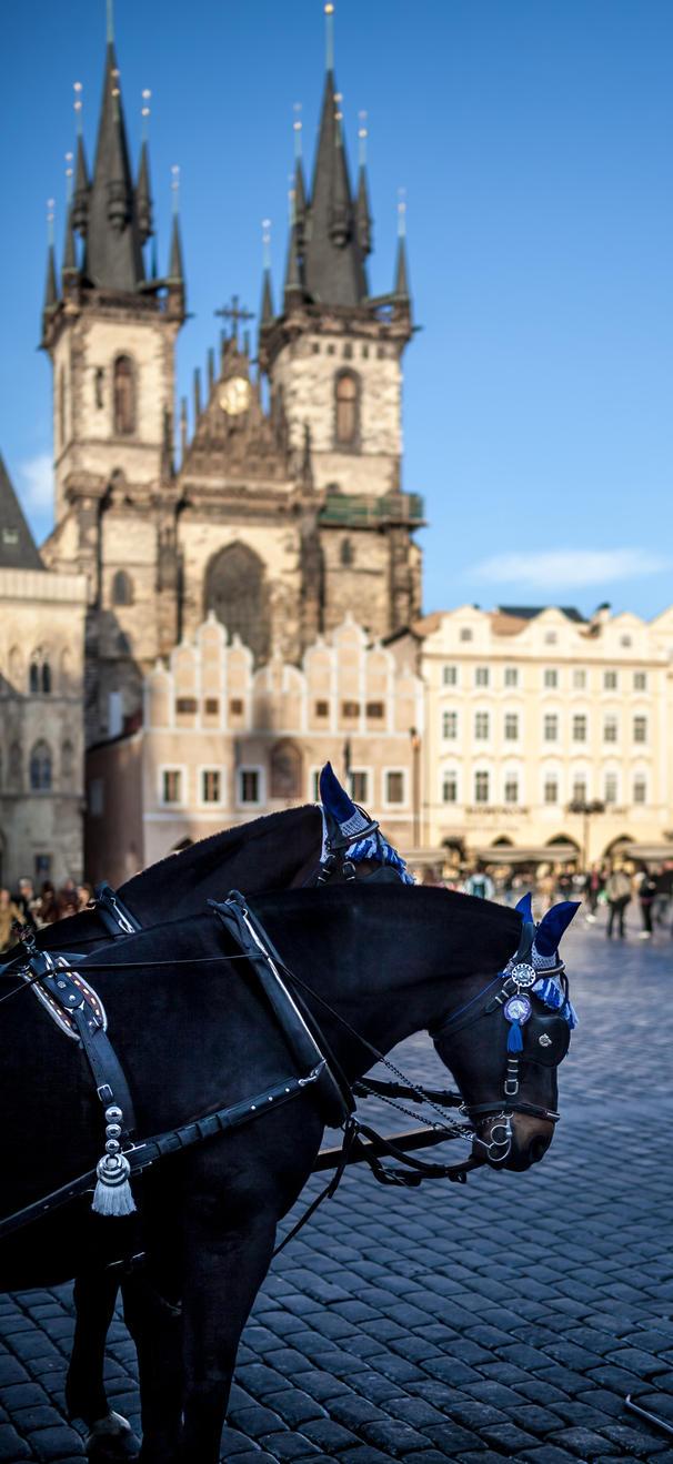 Greetings from Praha by WTek79