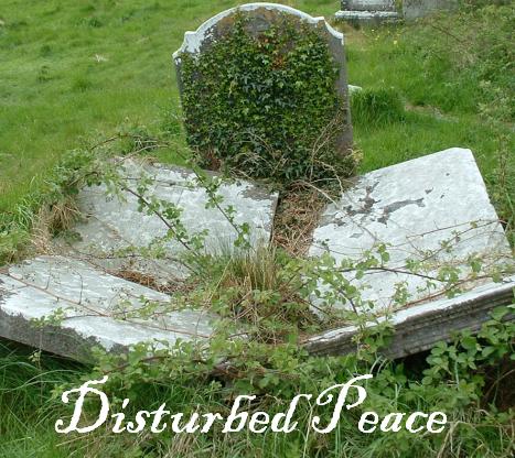 Disturbed Peace by Sadie Luna by Sadie-Luna