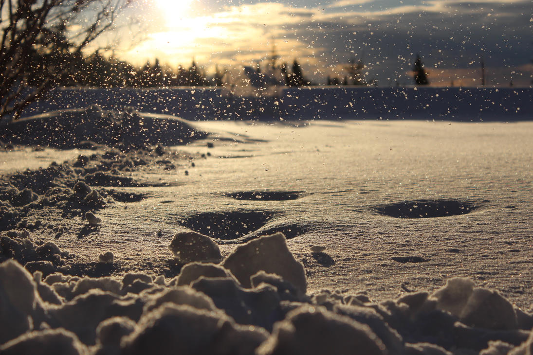 winter sunset and 'snow' by xdancingintherain