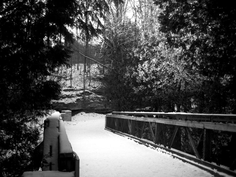 Tree Covered Bridge- Edit by Stargazer2017