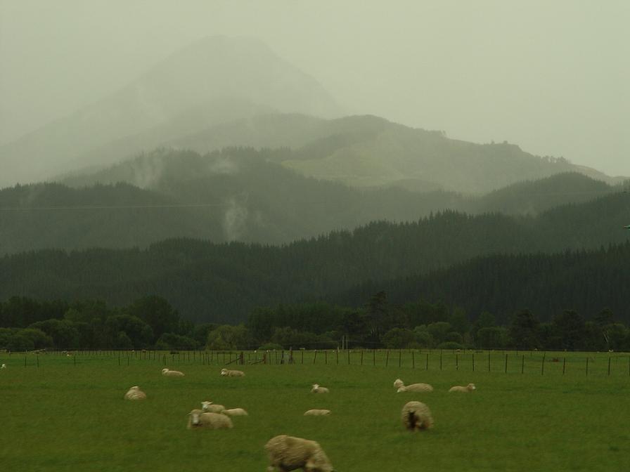 Essential New Zealand by StephaniePride