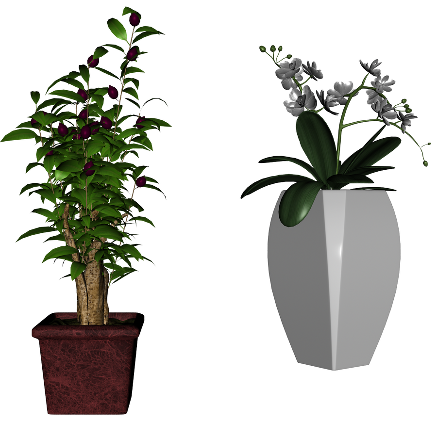 Plants stock pack 05