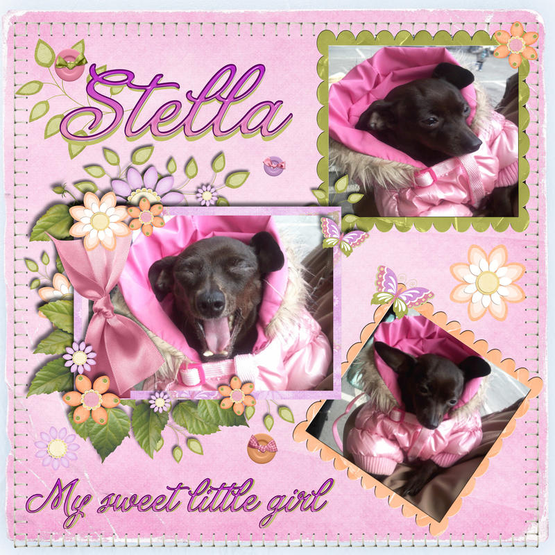 Stella My baby