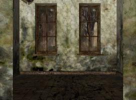 abandoned asylum entrance 0245 by Ecathe