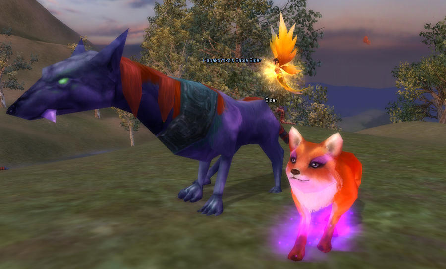 Me  Were Fox form  and my pet  White Pet Fox