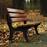 Autumn Miracle 5
