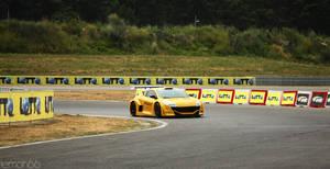 Yellow Beast II