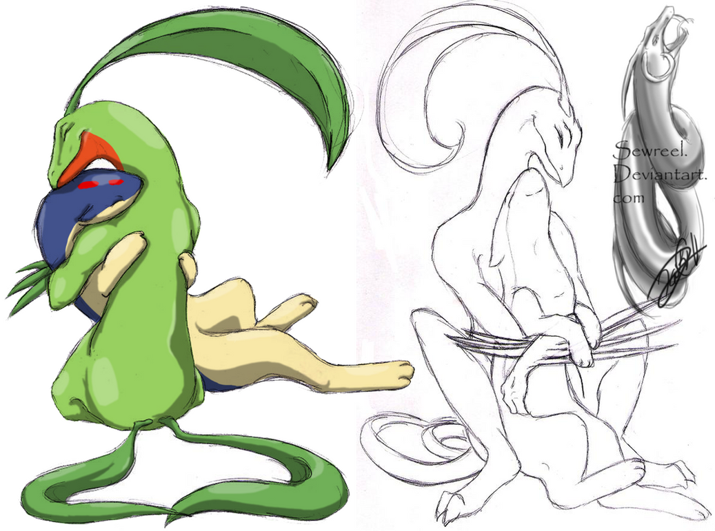 .::Grovyle and Quilava::. by sewreel on DeviantArt