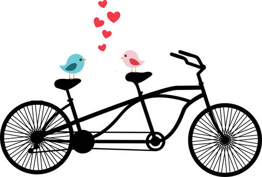 Love Birds on Tandem Bicycle