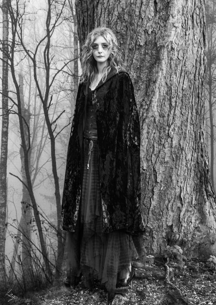 Woods Witch 2