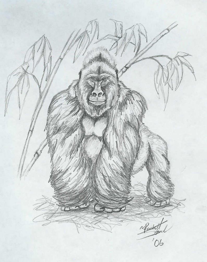 It is a photo of Sweet Drawing Of A Gorilla