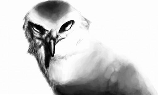 Kite by Quadrupedal