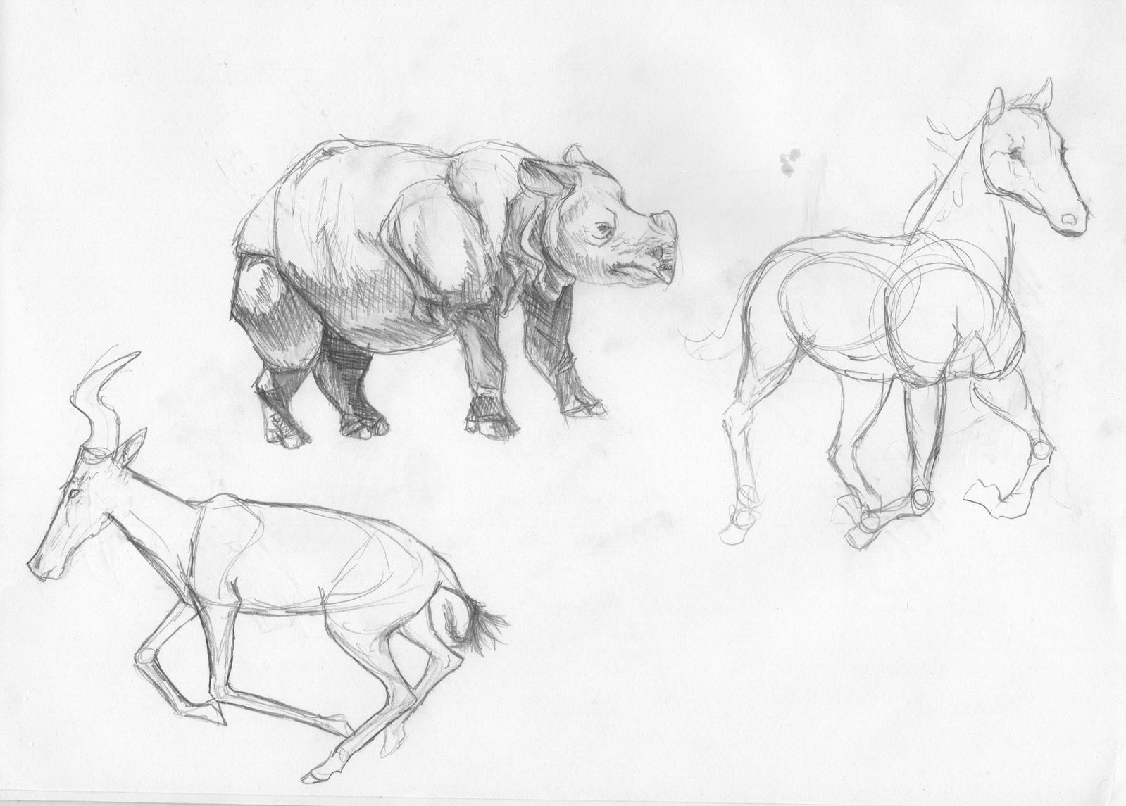 Animal doodles by Quadrupedal