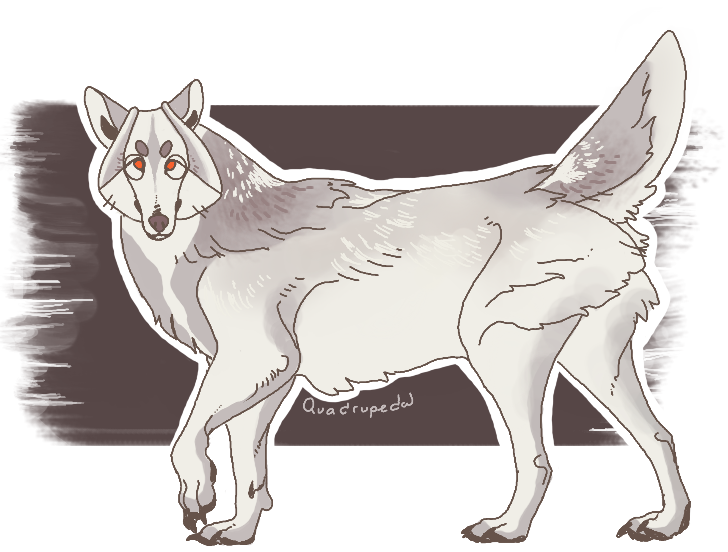 Wolf Design Commission by Quadrupedal
