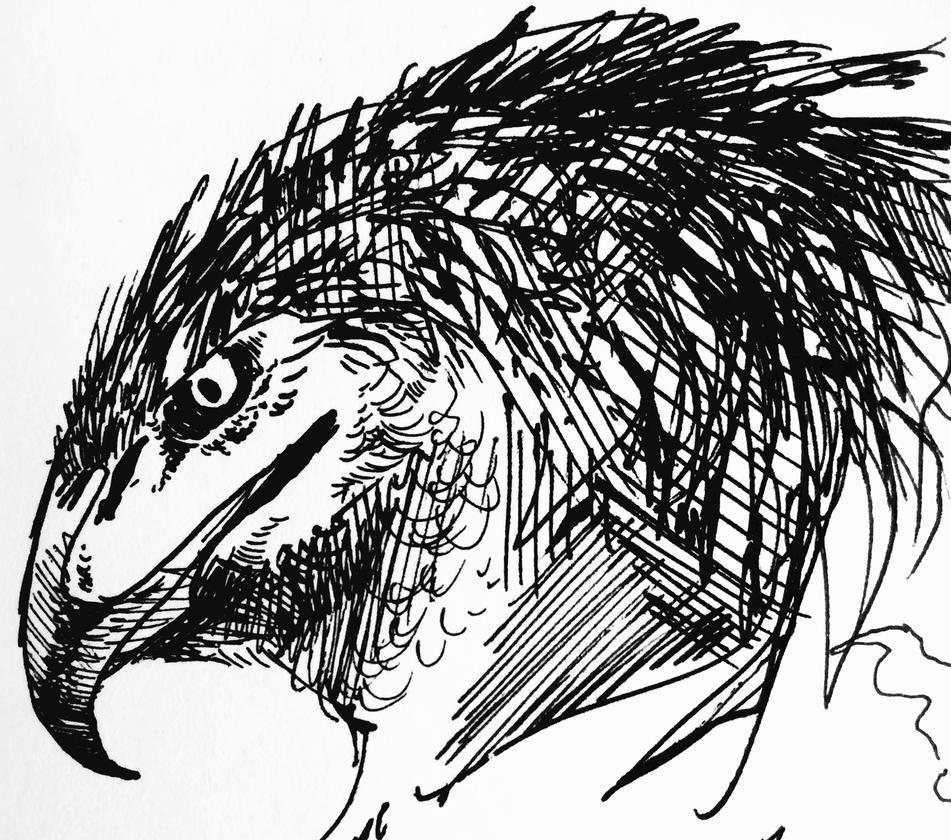 Bird Example by Quadrupedal