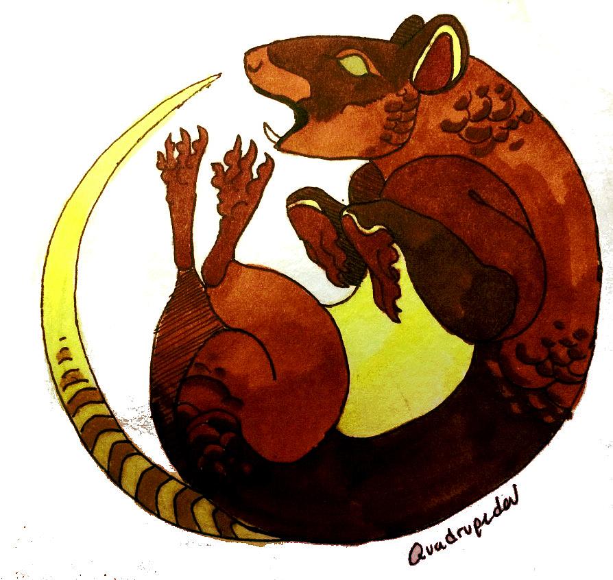 Lyre rat by Quadrupedal