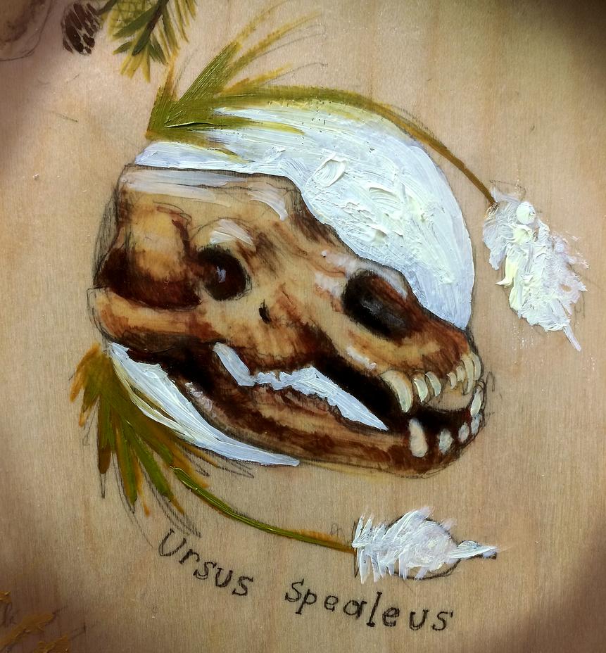 Cave Bear Beargrass by Quadrupedal