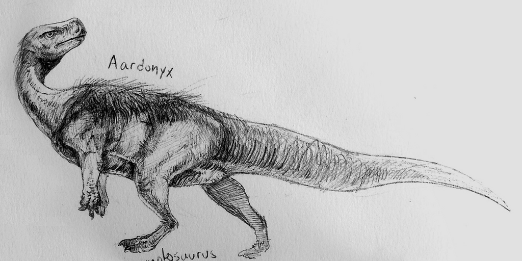 Aardonyx by Quadrupedal