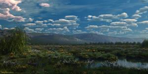Meadow by slepalex