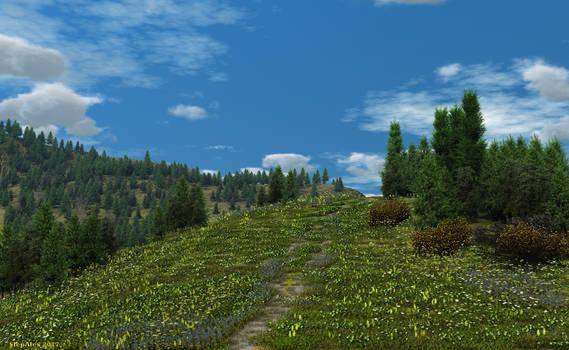 Honey meadow