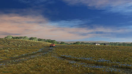 Road in the steppe