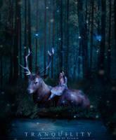 Tranquility by hayakiuu
