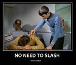 Spirk: Canon vs Slash