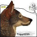 tripp0099 icon by FoxileEquine