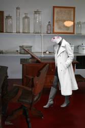 Dr. Rattus Photomanipulation 1