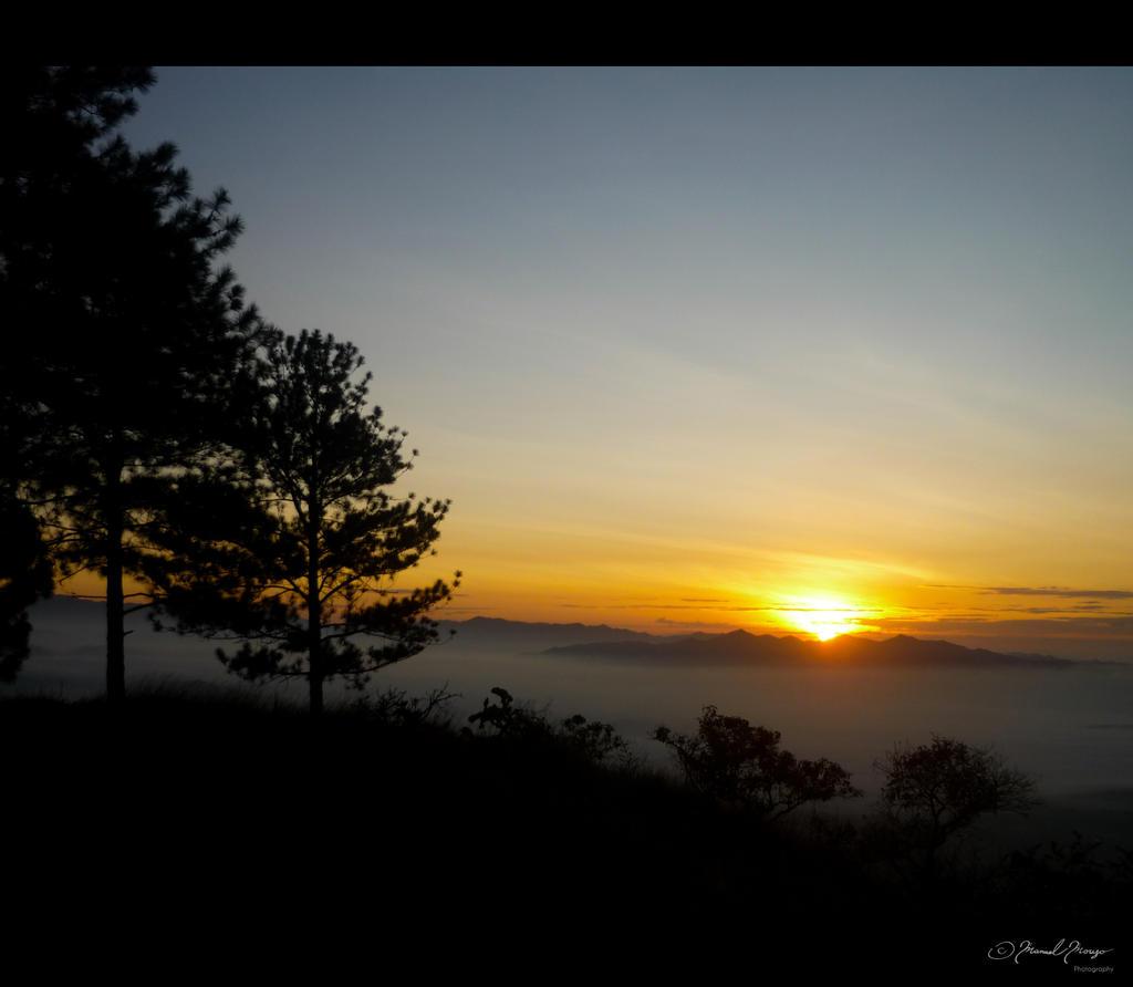 Golden skies by Thrym982