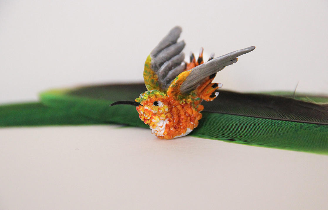 rufous hummingbird fimo by cola93
