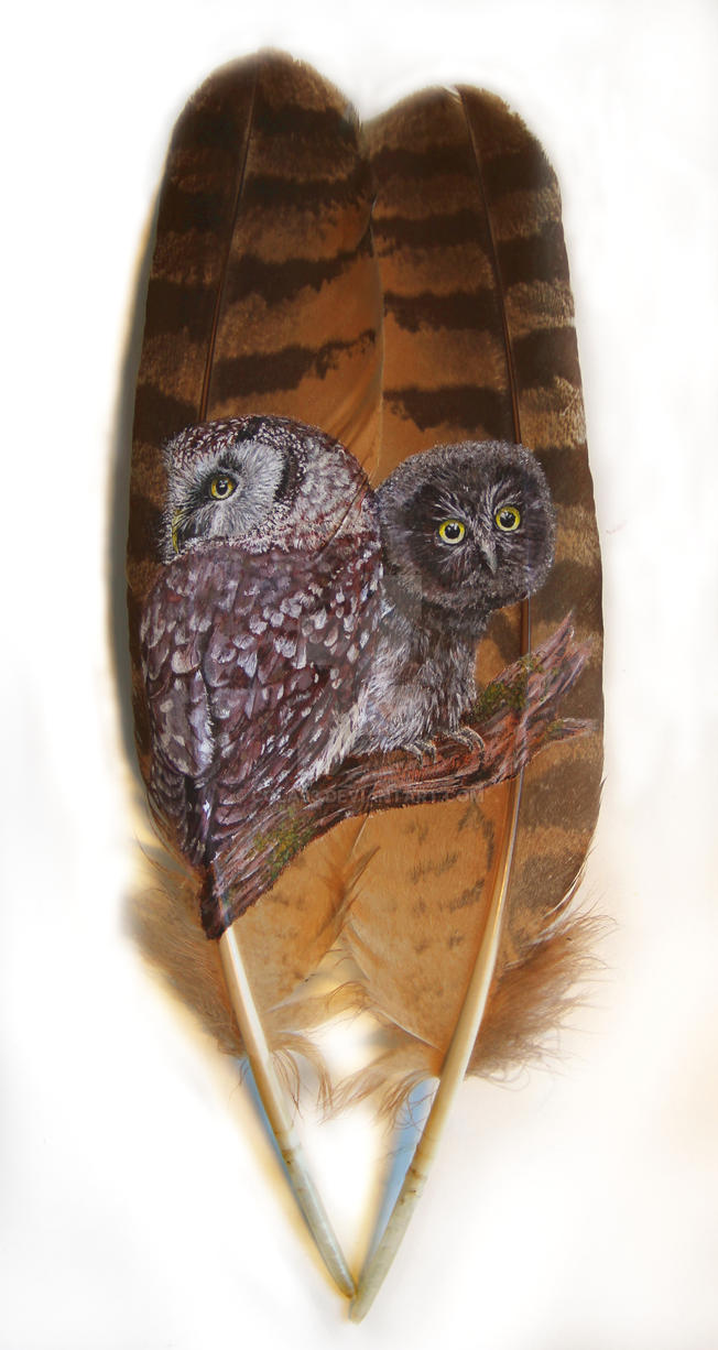 boreal owl family feather painting by cola93